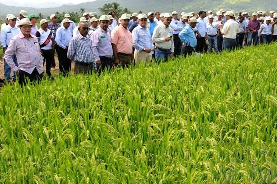 Agricultores de Arequipa se unen al Paro Nacional
